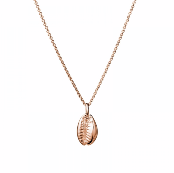 Cowrie shell rose gold