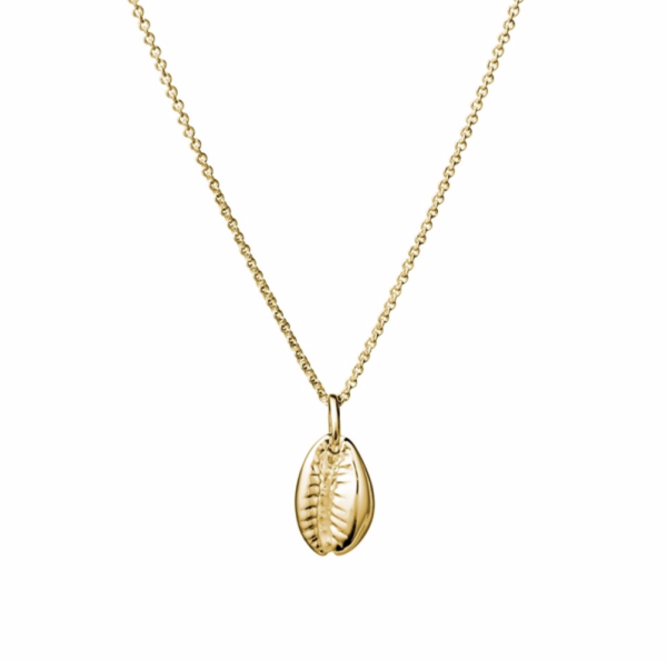 Cowrie shell in gold